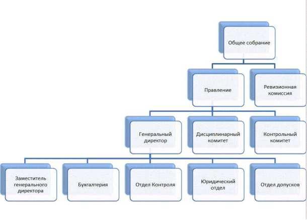 структура СРО