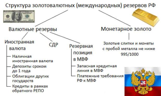 Struktura-ZVR-Rossii